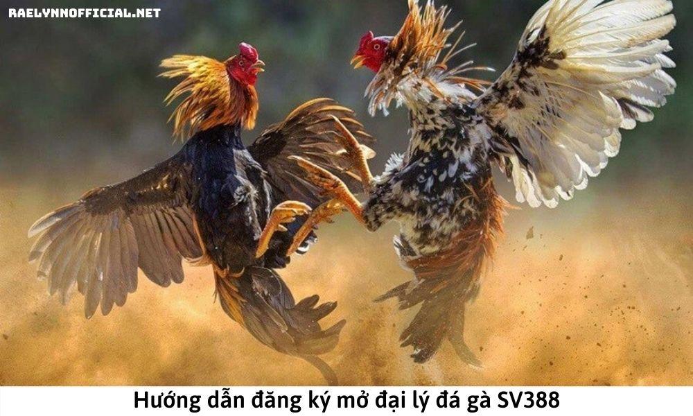 Hướng dẫn đăng ký mở đại lý đá gà SV388