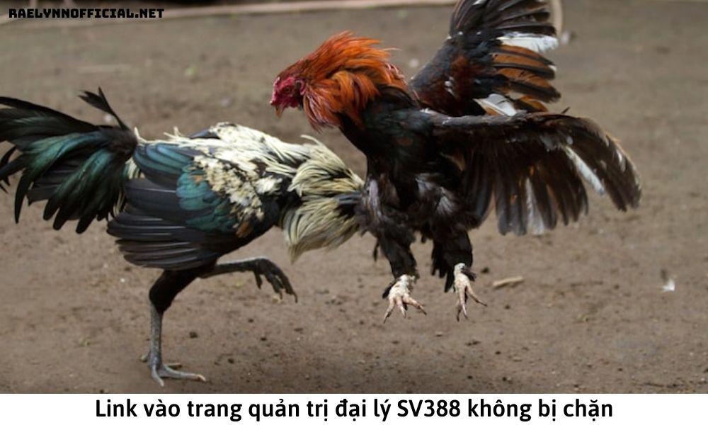 Link vào trang quản trị đại lý SV388 không bị chặn