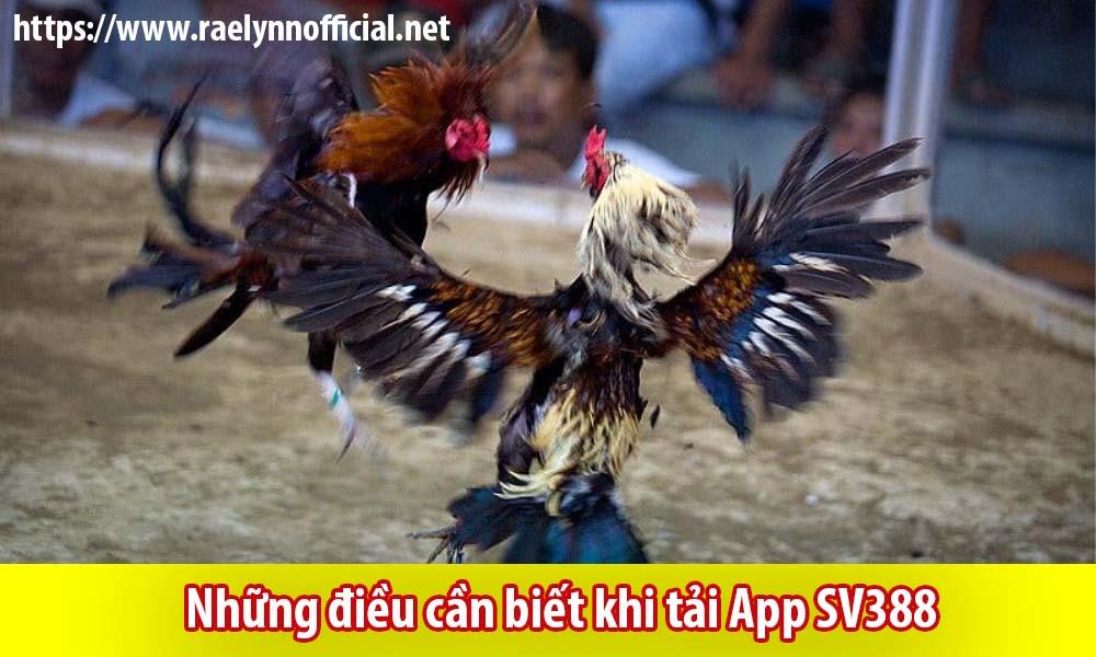 Những điều cần biết khi tải App SV388