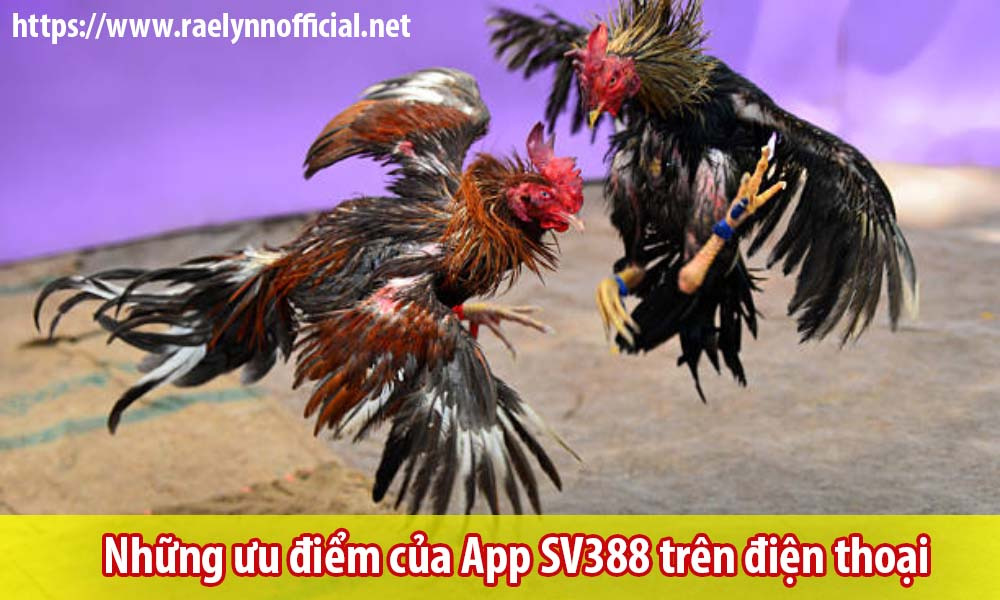 Những ưu điểm của App SV388 trên điện thoại